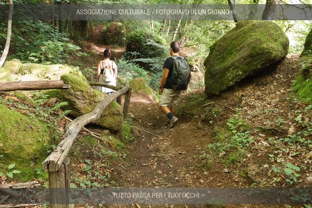 caccia-fotografica-ai-folletti-del-bosco-05-min