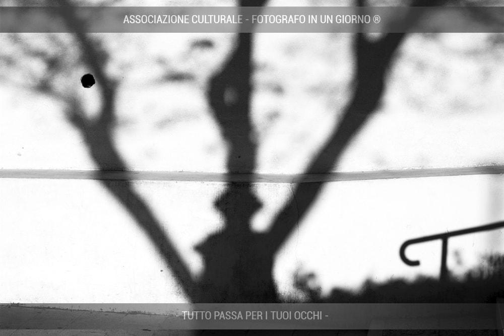 giochi-di-luce-e-ombre-avanzato-02-min